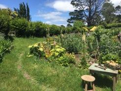 A little hobbit garden