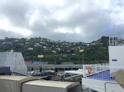 View of Wellington from the boat.