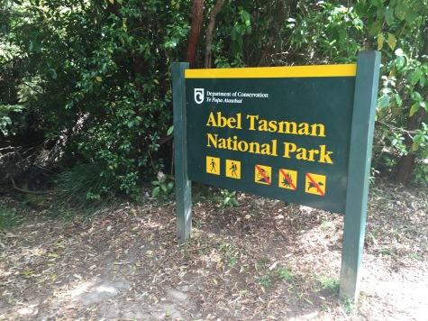 Hellooooo Abel Tasman!