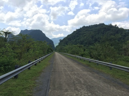 The road to the jungle
